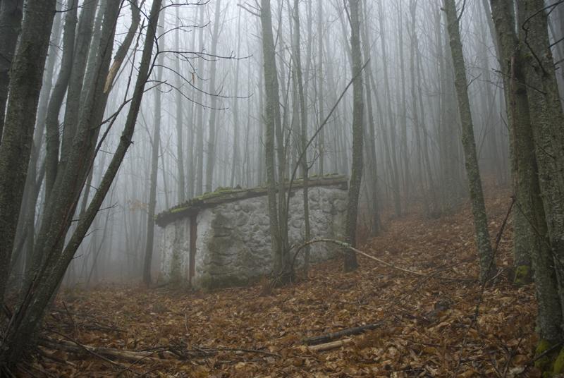 bosques-del-alto-ambroz
