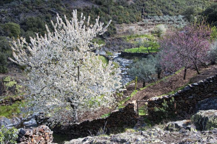 Valle del Esperabán