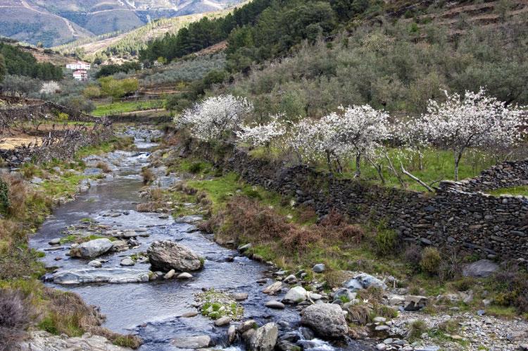 Río Esparabán