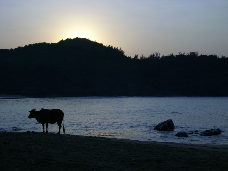 Playa de Ohm