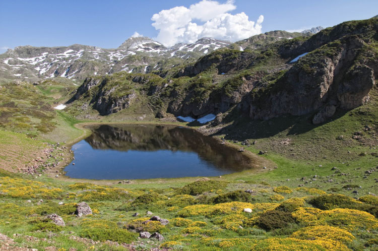 Pequeña laguna entre los lagos de la Cueva y Cerveriz
