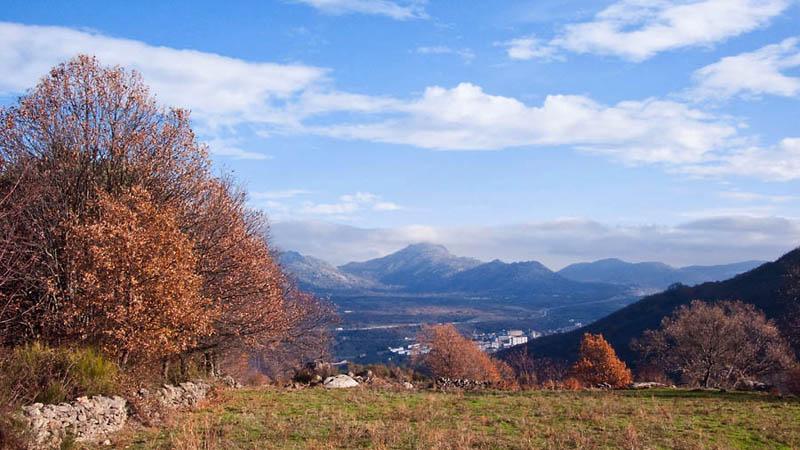 Camino Cantagallo
