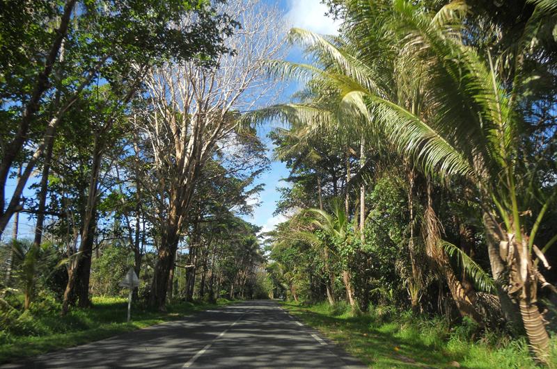 CARRETERA TEGAMPAIK, Nueva Caledonia
