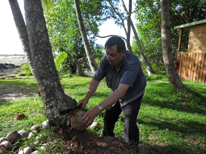 COCO, Nueva Caledonia