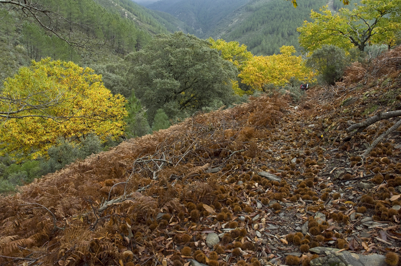 Las Hurdes, Sierra de Gata