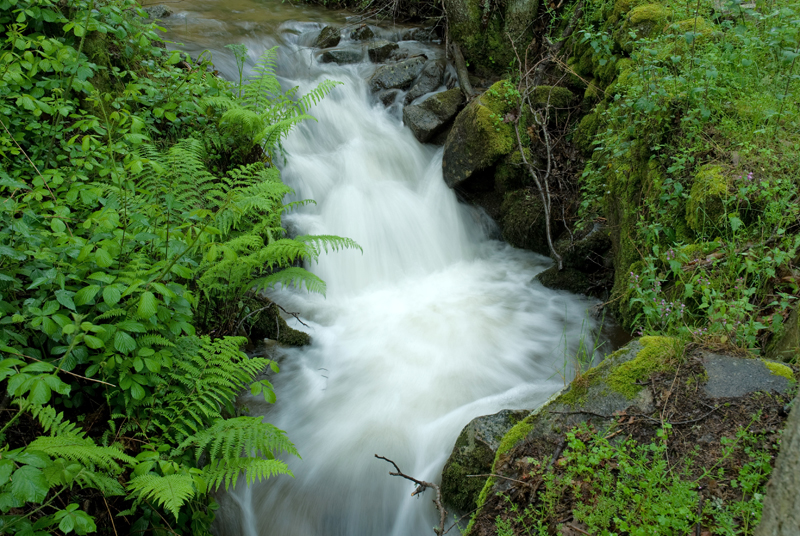 Cascada Ruta de la fuente del Lobo