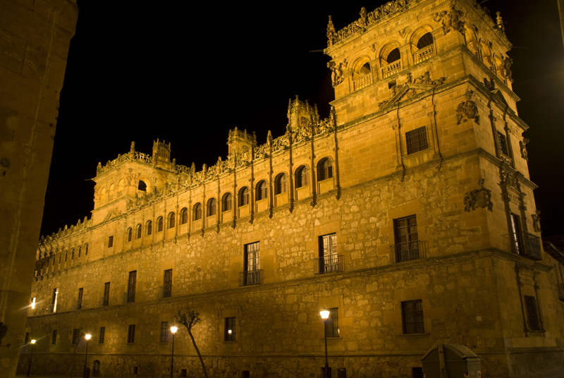 Palacio Monterrey. Salamanca