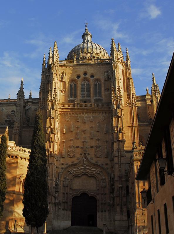 Puerta sur catedral nueva de Salamanca 024