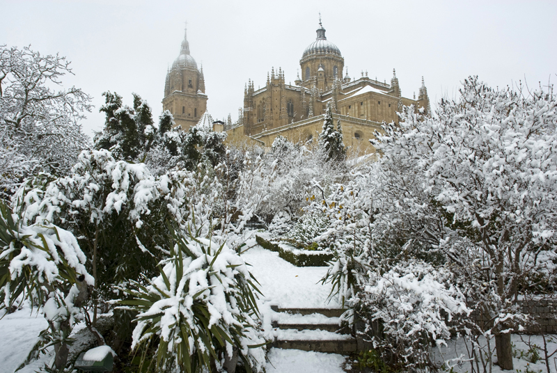 Salamanca ciudad monumental y universitaria el rinc n del trotamundos - Jardin de calisto y melibea salamanca ...
