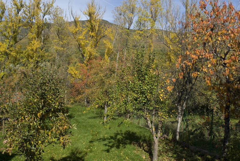 Huerto en la margen del Rió Tera, Sanabria, Zamora