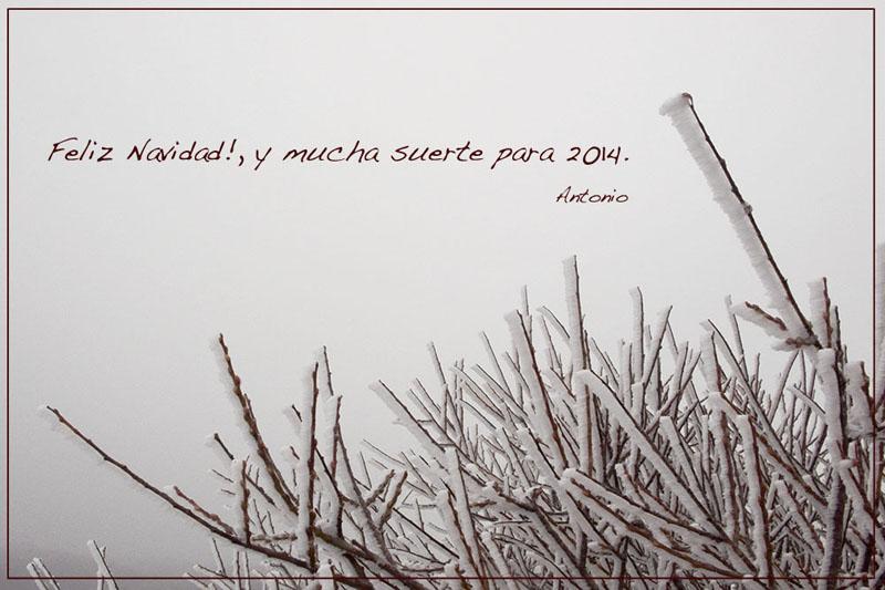 Feliz 2014, Antonio