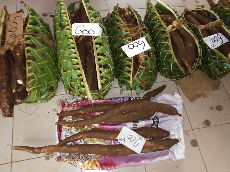 Port Vila Mercado 04
