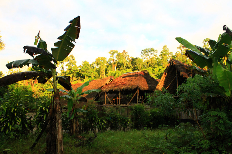 0 Viviendas Amazonía Colombiana