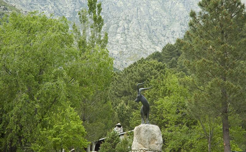 La Cabra-Guisando- Gredos