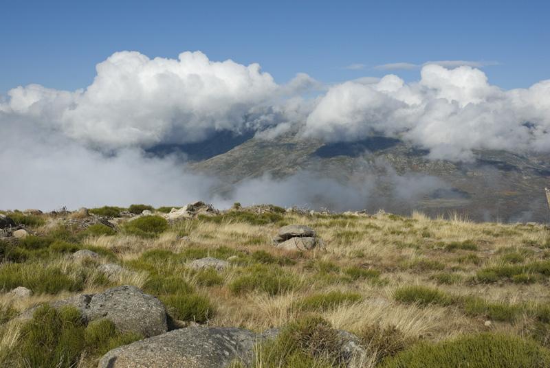 Sierra del Barco-Gredos_2