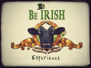 La experiencia de Ser Irlandés. Programa de inmersión lingüístico-cultural para adultos