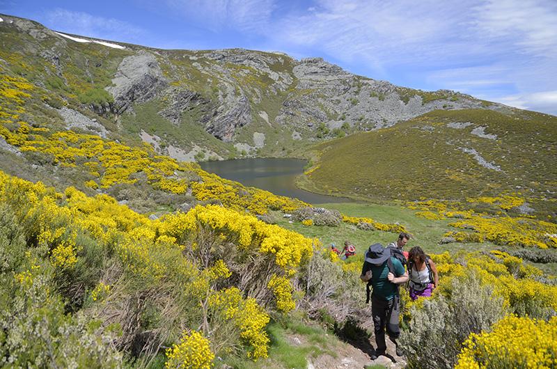 Subida a Vizcodillo, Sierra de Cabrera, León