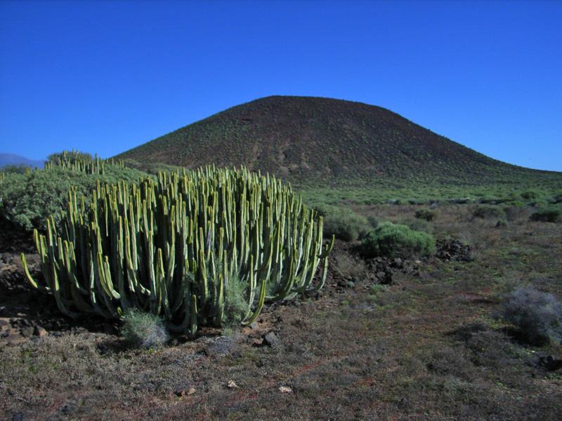 Isla de Tenerife