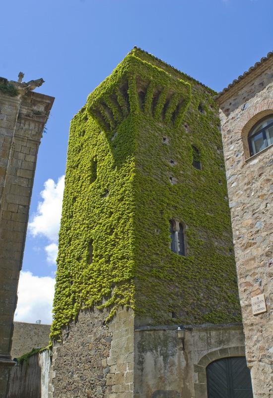 Torre de la Hiedra, Cáceres