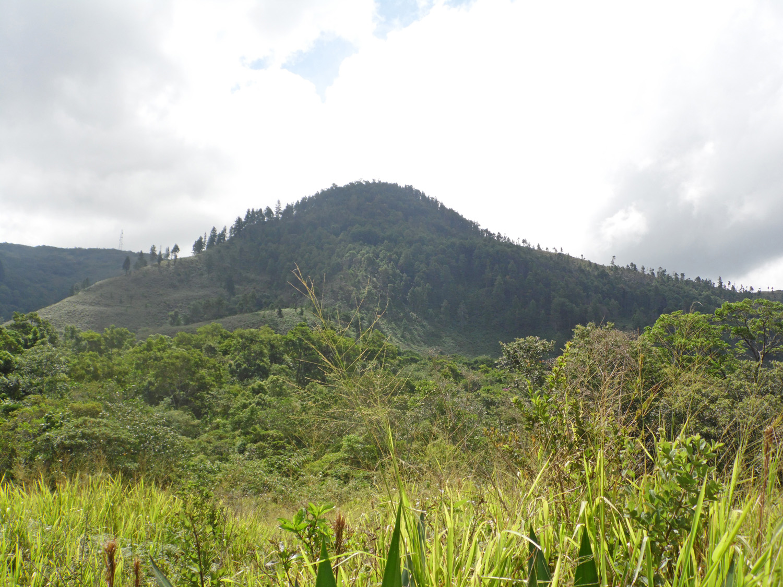 Parque Nacional Chorro El Indio, Venezuela