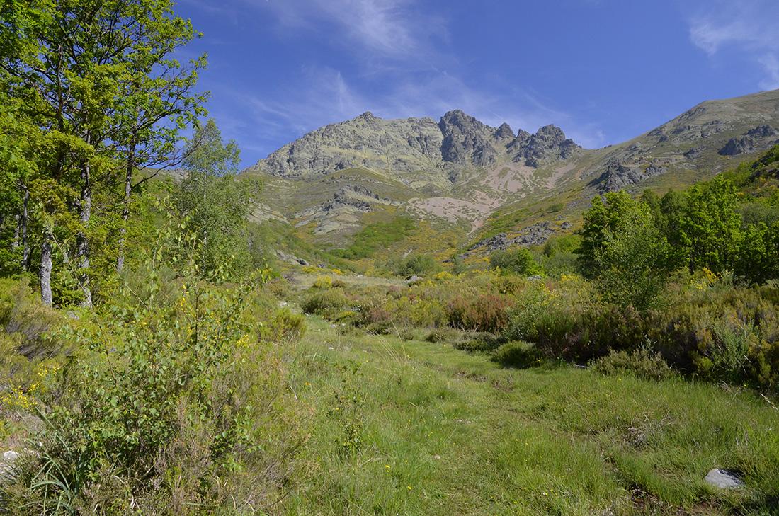 Curavacas, Montaña Palentina