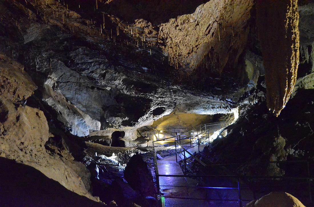 Crag Cave, Irlanda