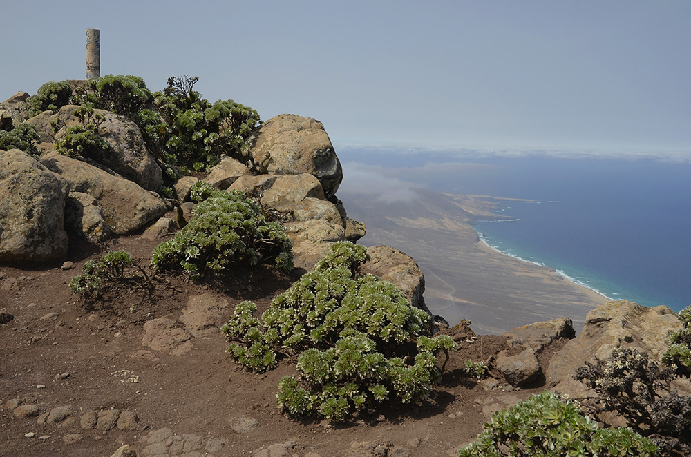 Pico de la Zarza-Fuerteventura