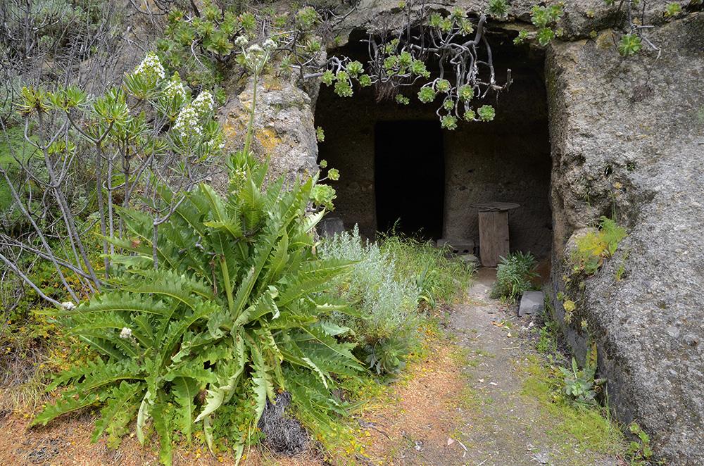 Cueva-cuadra en Los Cernícalos