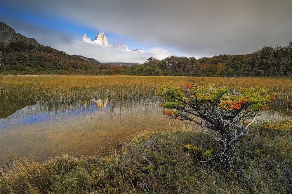 APPEARENCE - FORTUNATO GATTO (REINO UNIDO) - Ganador Paisaje de Montaña
