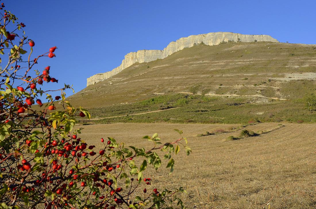 El Cerro de la Muela-Burgos