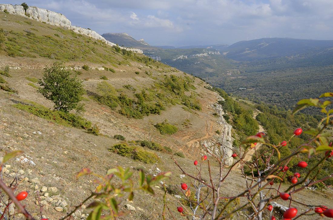 Resaltes rocosos-Burgos