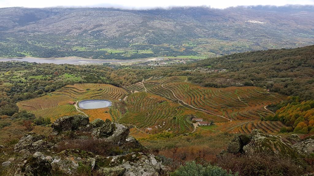 Valle del Jerte-Cáceres