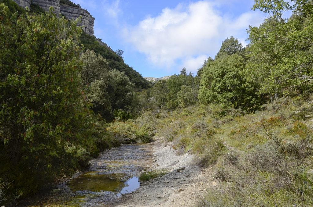 Canal del Dulla-Burgos