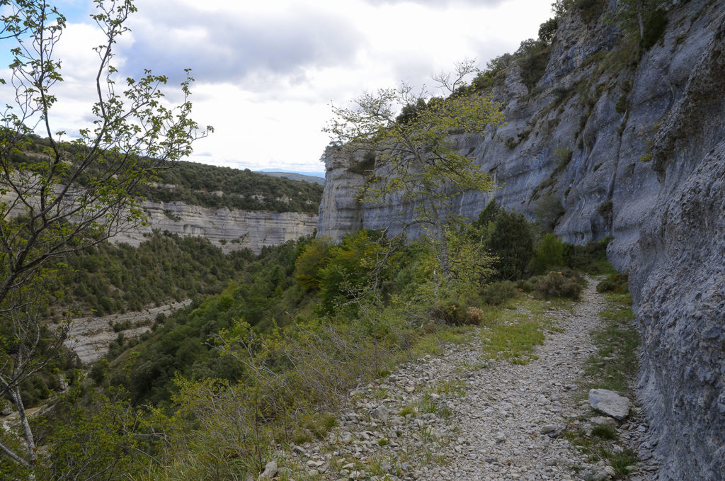 Canal de Valdecastro-Burgos