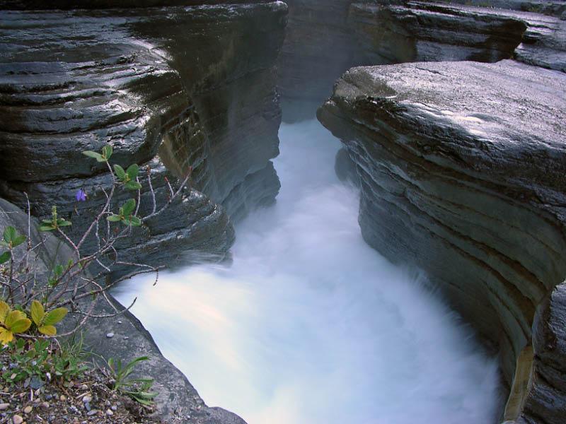 Mistaya canyon en Jasper NP