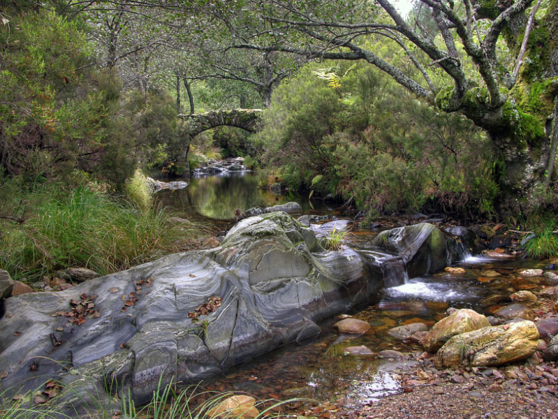 Puente en el río Acedón