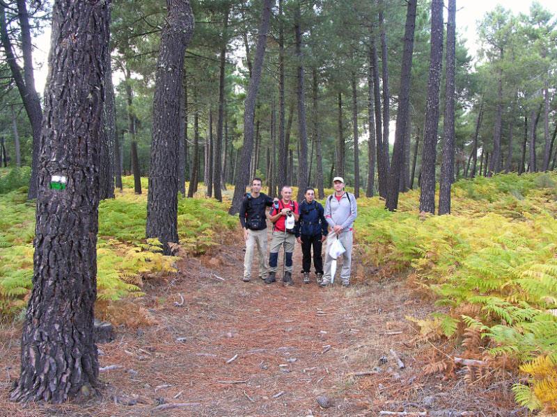 En los pinares cercanos al Maillo