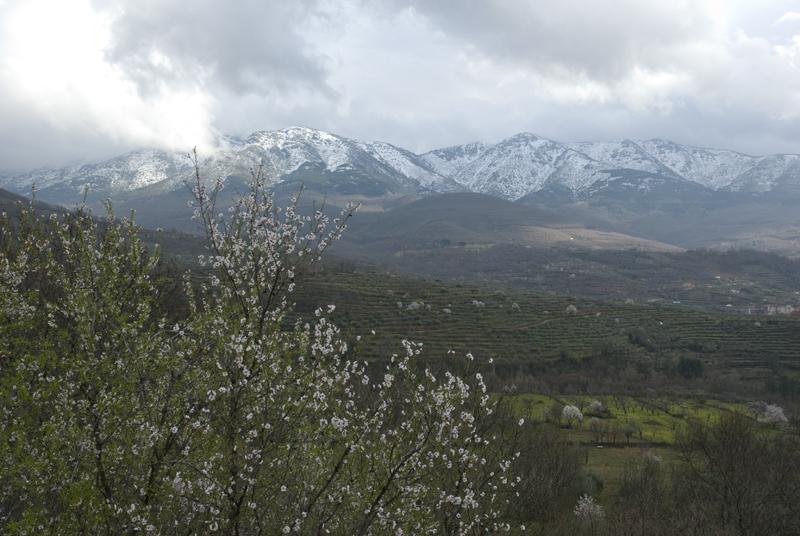 valle-del-ambroz