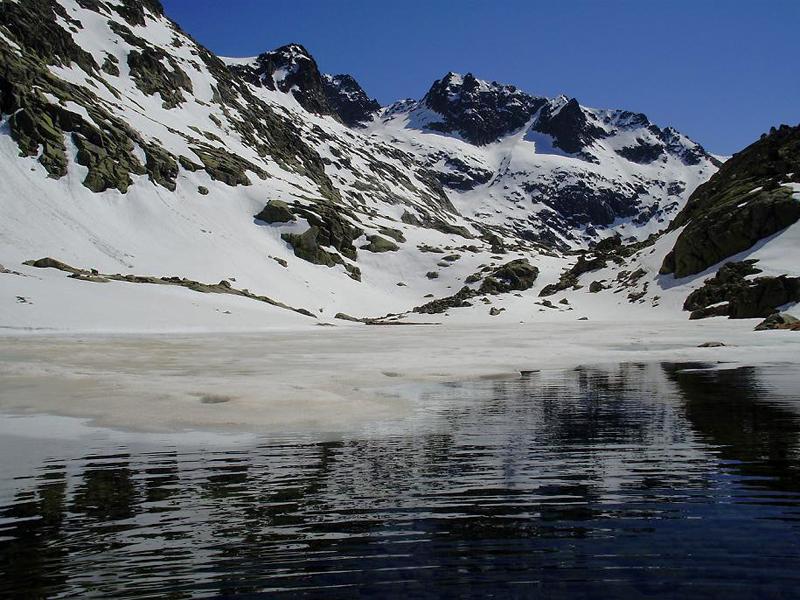 El gutre y la laguna bajera