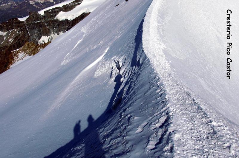 Alpes (Cresterio Castor)