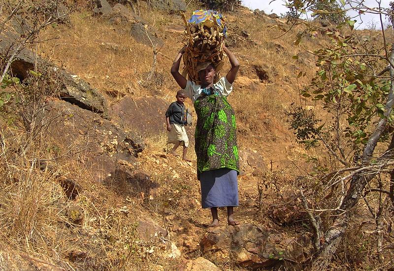 Mujer con niño acarreando leña