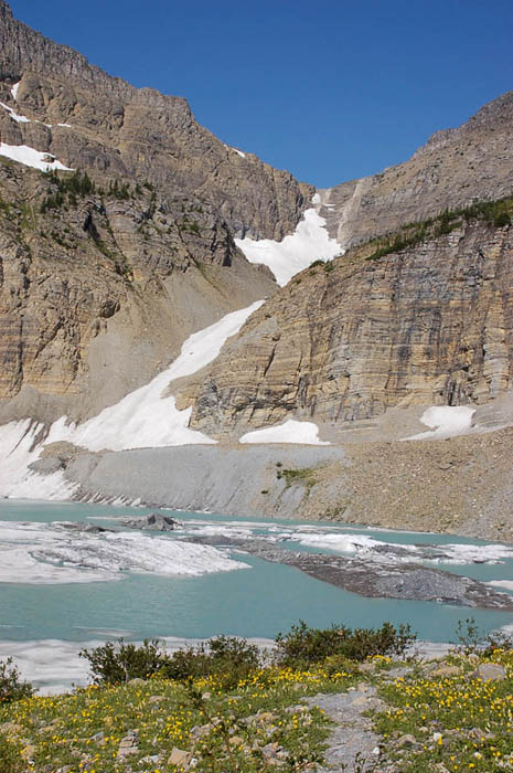 Glaciers Grinnell