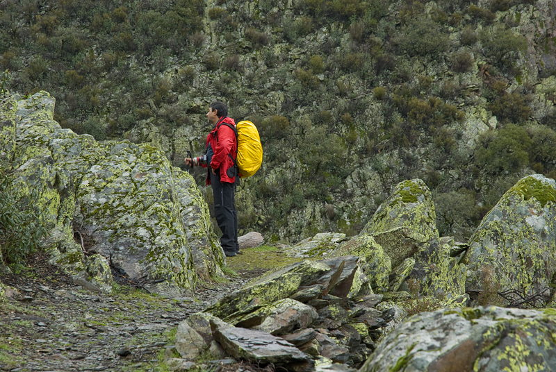 Camino de Ovejueala