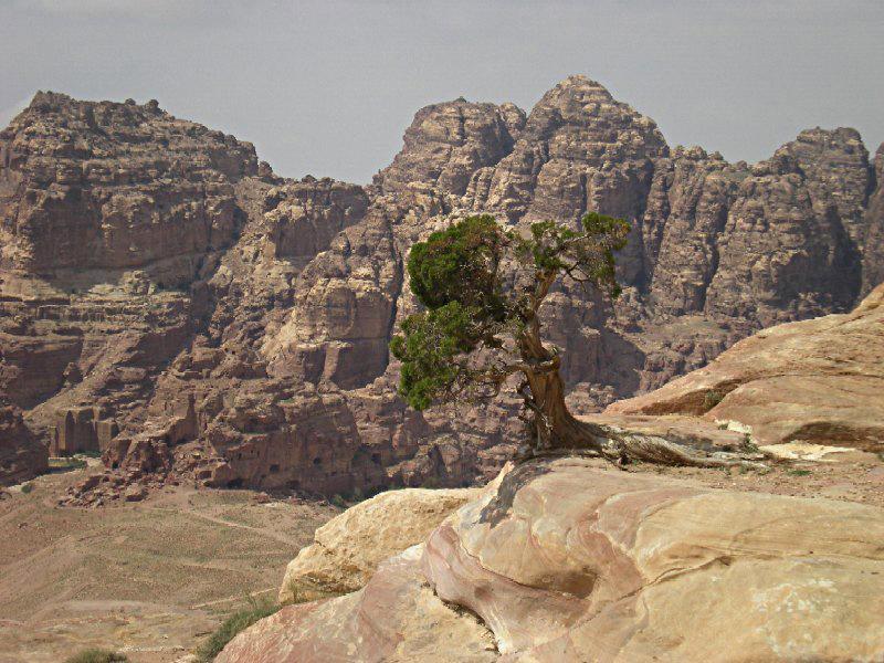 Jabal al Jarun. Petra