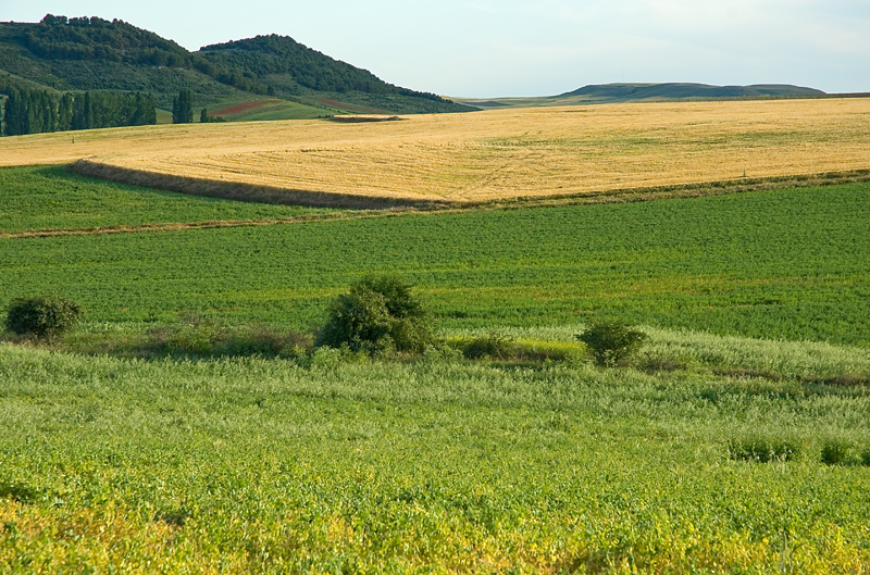 Montes de Torozo, Urueña