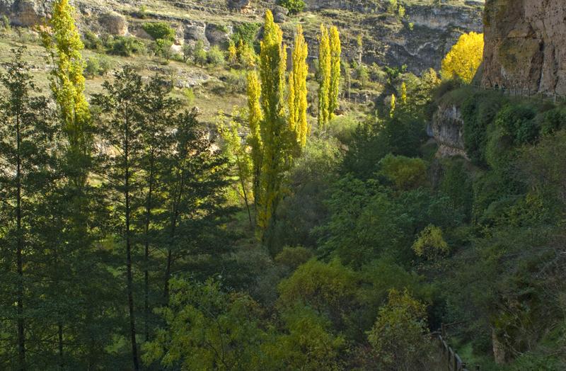Hoces del Río Duratón. Segovia