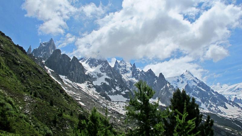 Ajugas de Chamonix