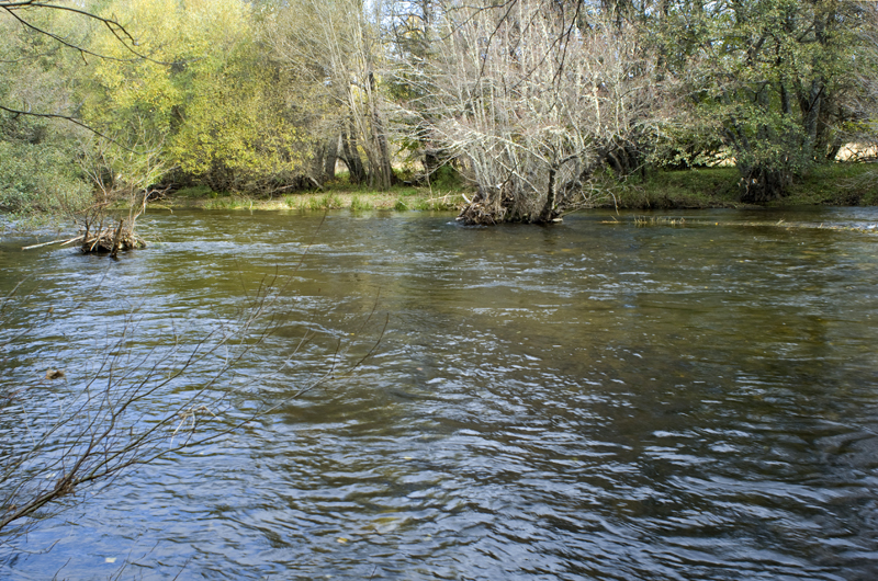 Curso del Río Tera Zamora