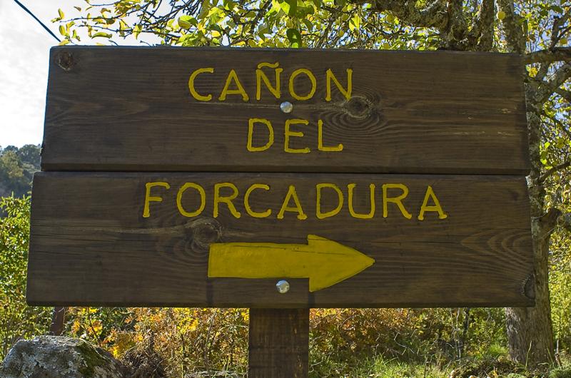 Curso del Río Forcadura. Zamora