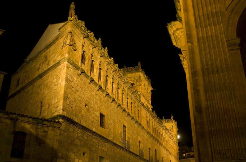 Palacio de Monterrey. Salamanca 08